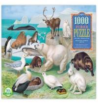 eeBoo - Puzzle Antarktis 1000 Teile