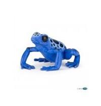 Blauer Äquatorialfrosch