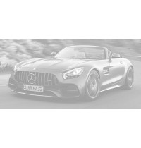 1:87 Mercedes-AMG...