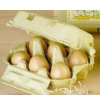 Eier, braun (6er-Pack)