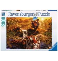Ravensburger Puzzle - Am Wasserloch, 2000 Teile