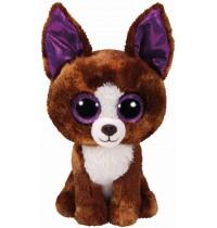 Ty Plüsch - Beanie Boos Glubschis - Dexter, Chihuahua 15cm