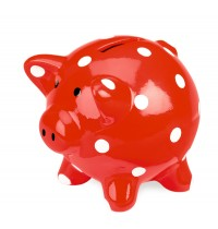 Die Spiegelburg - Glücksbringer: Sparschwein