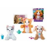 Hasbro - FurReal Friends Lil Big Paws