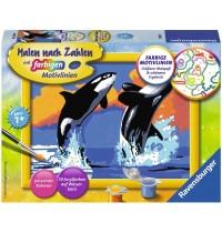 Ravensburger Spiel - Malen nach Zahlen mit farbigen Motivlinien - Verspielte Orcas