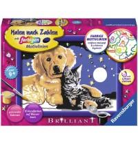 Ravensburger Spiel - Malen nach Zahlen mit farbigen Motivlinien - Funkelnder Sternenhimmel