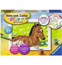 Ravensburger Spiel - Malen nach Zahlen mit farbigen Motivlinien - Kleines Fohlen