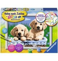 Ravensburger Spiel - Malen nach Zahlen Junior - Süße Hundewelpen