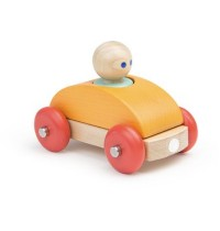 Tegu Baby - Magnetic Racer A