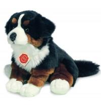 Teddy-Hermann - Berner Sennenhund sitzend, 29 cm