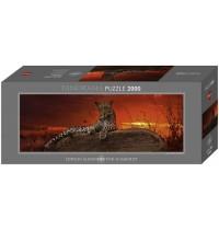 Heye - Panoramapuzzle 2000 Teile - Edition Alexander von Humboldt - Red Dawn, Alex Bernasconi