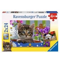 Ravensburger Puzzle - Niedliche Vierbeiner, 2x24 Teile
