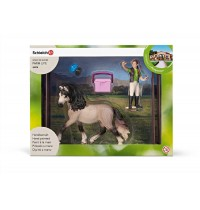 Schleich - World of Nature - Farm Life - Zubehör - Pferdepflegeset, Andalusier