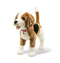 Nelly the Beagle 65 braun/wss