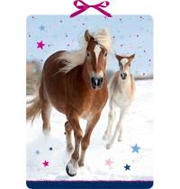 Coppenrath Verlag - Pferdefreunde im Schnee, Wand-Adventskalender