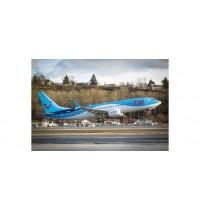 B737 Max 8 TUIfly - 1:100