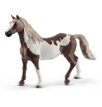 Paint Horse Wallach