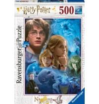 Harry Potter in Hogwar 500 Te