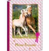 Freundebuch: Pferdfreunde Meine Freunde