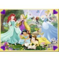 DPR: Disney Princess 1 100 Te