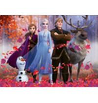 DFZ: Frozen 2          100 Te