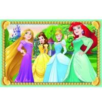 DPR: Disney Princess 6 T. Würfelpuzzles