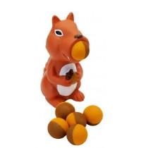 Eichhörnchen Plopper