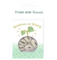 Coppenrath Verlag - Christl. Geschenke - Geprägte Saatbohnen - Pflanze deine Wünsche